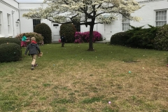 Easter Egg Hunt - 2018